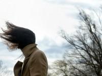 В Запорожье ожидаются заморозки с сильным ветром