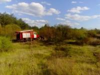 На Хортице пожар тушили несколько десятков спасателей