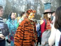Запорожцы собираются митинговать против использования животных в цирках