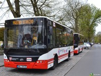 Польша закупит запорожские автобусы (Фото)