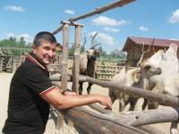 В бердянский зоопарк ищут волонтеров – обещают еду и жилье