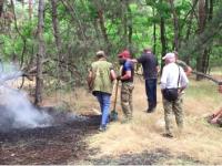 На Хортице действуют пироманы – снова горел лес (Видео)