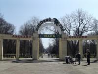 В Запорожье хотят запустить бесплатный маршрут до «Дубовки»