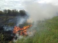 На Хортице снова тушили масштабный пожар (Фото)