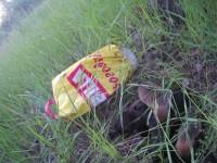 В Запорожье щенков выбросили в замотанном скотчем пакете