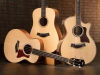 Первая гитара для ребёнка – как выбрать?