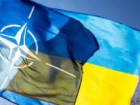 Один из запорожских нардепов не поддержал вступление Украины в НАТО
