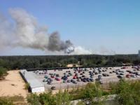 В Энергодаре  подожгли лес – дым виден за километры