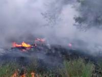 На Хортице снова тушили пожар (Видео)