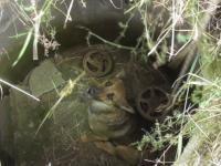 Спасатели вызволили из колодца агрессивную собаку (Видео)