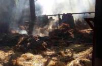 На Хортице подожгли конюшню с запасами сена на десятки тысяч гривен