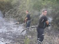 Спасателям пришлось добираться до горящих плавней Хортицы на катерах (Фото)