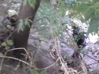 Запорожец упал с дамбы и едва не захлебнулся (Видео)