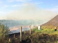 Возле запорожских мостов бушует пожар
