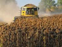Фермер из Запорожской области самовольно занял участок земли на 40 гектаров