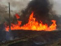 В Запорожской области из-за пожара на железной дороге задержали два поезда