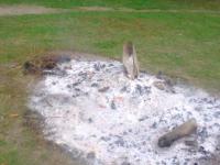 На Хортице сожгли статую Перуна (Фото)