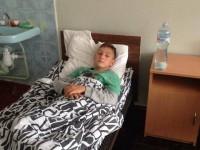 На запорожского школьника напала стая бездомных собак