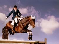 На Хортице состоится чемпионат по конному спорту