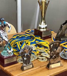 В Запорожье состоялся финал чемпионата по футболу среди команд объединенных громад