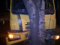 На окраине Запорожья водитель фуры врезался в дерево