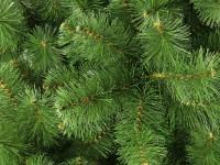 Тонкости выбора новогодних елок