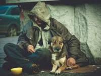 Бездомные разбили возле запорожской больницы палаточный городок
