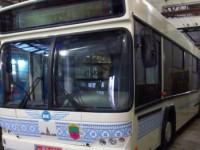 Ждать уже недолго: Буряк рассказал, когда запорожцы увидят большие автобусы