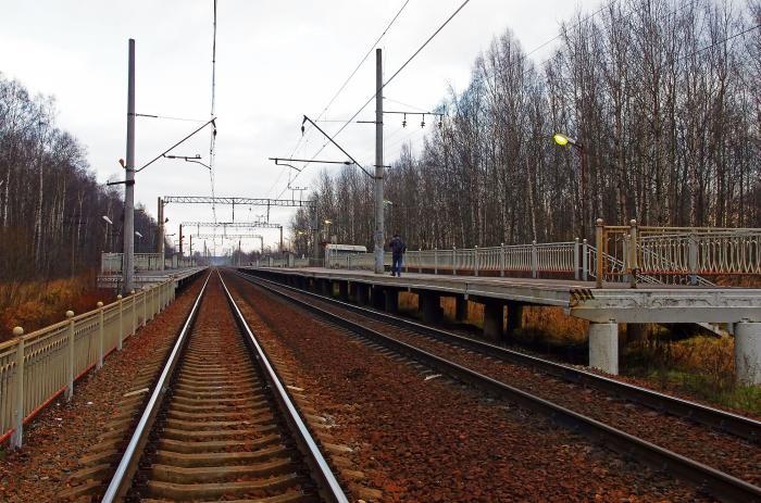 Вандализм процветает: вЗапорожской области разрушили железнодорожную платформу