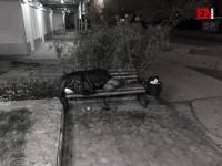 В Запорожской области возле автовокзала на лавке нашли тело мужчины