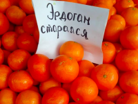 «Эрдоган рекомендует»: на запорожском курорте креативно подошли к продаже мандаринов