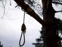 Жителя Запорожской области повесили на дереве, замаскировав под самоубийство