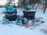 В «Умвельт-Запорожье» рассказали о причинах мусорного коллапса