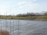 В области нетрезвые мужчины сорвались со склона в реку и кричали о помощи