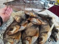 В Запорожской области двое человек попали в реанимацию, поев рыбы со стихийного рынка