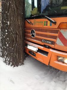 В Запорожье мусоровоз влетел в дерево (Фото)