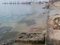 На запорожском курорте на поверхности залива Азовского моря обнаружили маслянистые пятна (Фото)