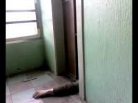 Запорожец пытался спрятать труп в лифт под камерой видеонаблюдения
