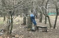 В Запорожской области в парке повесился мужчина