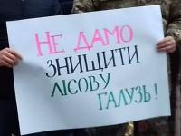 В Запорожской области стремительно сокращается количество лесников
