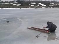 Жители запорожского села спасли провалившего под лед пса (Видео)