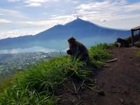 Запорожец месяц проживший на Бали: «Я ошибался, когда летел за пляжным отдыхом»