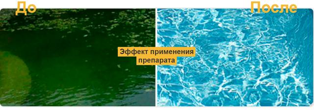 705455398_w640_h2048_screenshot_1