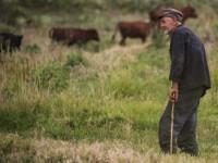 Портрет по-человечески: запорожцев приглашают на необычную фотовыставку