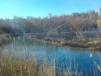 В Запорожье горел парк