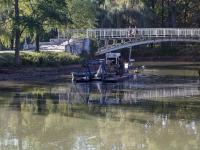 Парку «Дубовая роща» передадут в собственность пешеходный мост