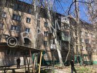 В Запорожской области на пятиэтажку рухнул огромный тополь