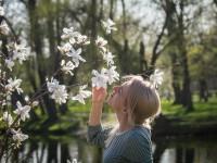 Запорожцы устроили массовую фотосессию у цветущих магнолий в «Дубовой роще» (Фоторепортаж)