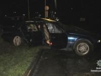 Водитель «БМВ» врезался в рекламный щит, объезжая труп собаки – погиб пассажир