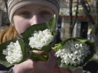 У уличной торговки конфисковали краснокнижные цветы и выписали штраф
